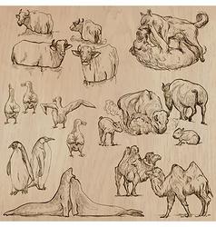 Animals around the World part 20 Hand drawn pack vector image