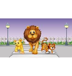 Wild animals in the street vector image