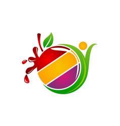 health fruit juice vector image