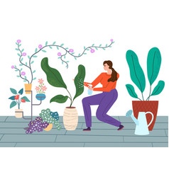 Houseplants care young woman vector