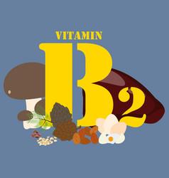 Vitamin b2 healthy nutrient rich food vector