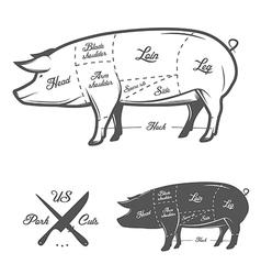 American US cuts of pork vector image vector image