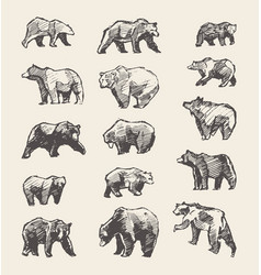 set drawn wild beers sketch vector image