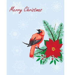 Bird christmas vector
