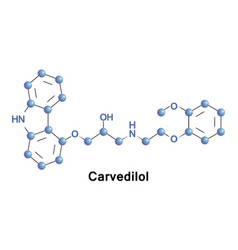 carvedilol is a beta blocker vector image