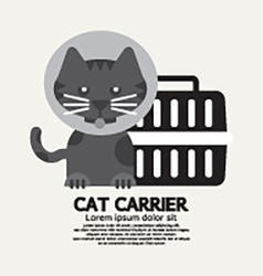 Cat wearing cone collar with carrier vector