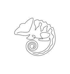 one continuous line drawing beauty chameleon vector image