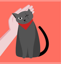 one-eyed cute cat is disabled caring for a cat vector image