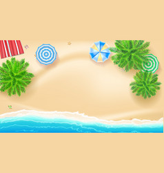 Palm trees beach mat sun umbrellas on seashore vector