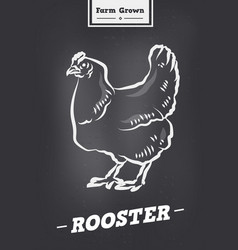 rooster vintage logo in retro style poster vector image