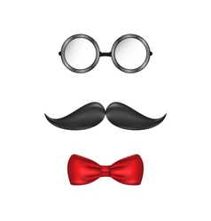 Hipster symbolic of a man face glasses mustache vector image