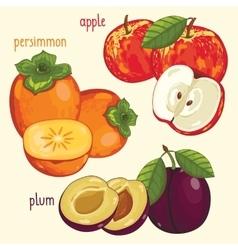 Fresh fruit mix isolated vector image