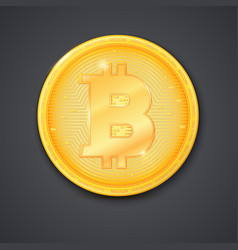 Coin of virtual currency bitcoin with shadow icon vector
