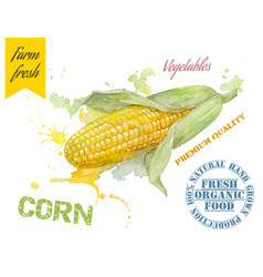 Corn watercolor banner vector