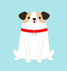 Dog sitting white puppy pooch red collar bone vector