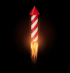 firework rocket with flame flies up vector image