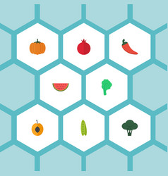 flat icons melon slice cabbage lettuce and other vector image