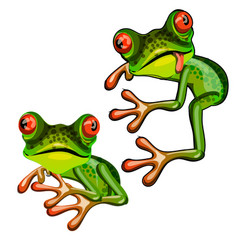 green tree frog hugging an imaginary object and vector image