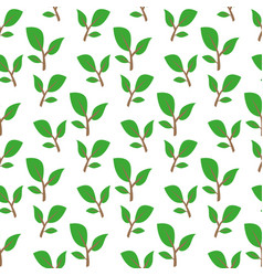 green twig pattern vector image