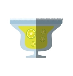 Alcoholic cocktail popular bar lemon slice shadow vector