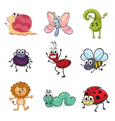 Colorful creatures vector image vector image