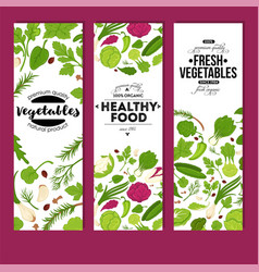 Fresh vegetables and healthy food banners organic vector