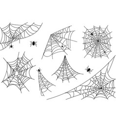 irregular realistic spider webs in different vector image