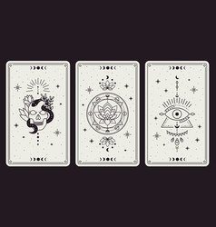 magic occult cards vintage hand drawn mystic vector image