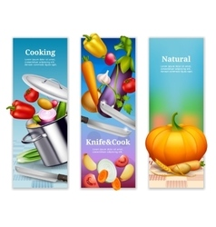 Natural Vegetables Vertical Banners vector