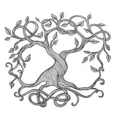 Celtic Tree of Life vector image vector image