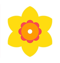 Narcissus - flower icon vector image vector image