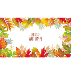 seasonal banner of autumnal leaves vector image