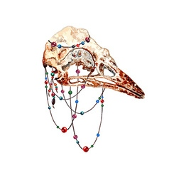 Bird Skull2 vector image