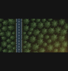 Aerial top view forest and road vector