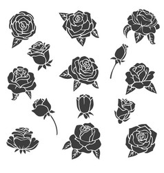 black of roses silhouette vector image