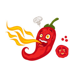 chilli pepper with flame vector image