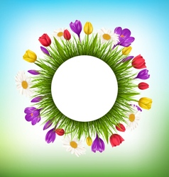 Circle frame with grass and flowers Floral nature vector image
