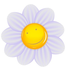 Daisy with a cheery smile isolated vector image