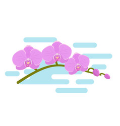 orchid in flat design background vector image
