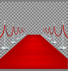 Realistic red carpet between rope barriers eps 10 vector