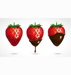 Strawberry dipped in chocolate vector
