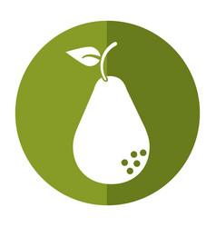 Avocado health diet icon shadow vector