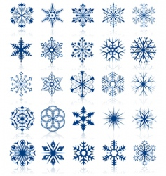 snowflake shapes vector image vector image
