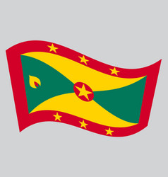 flag of grenada waving on gray background vector image vector image
