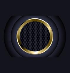 Abstract gold circle dark grey hexagon mesh vector