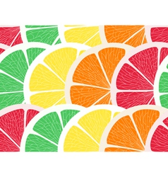 Citrus assorted seamless background vector image