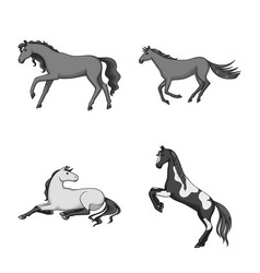 Isolated object farm and riding icon vector