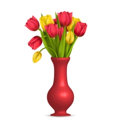 Tulips in vase isolated on white vector
