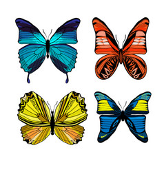colorful graphic insects set vector image vector image
