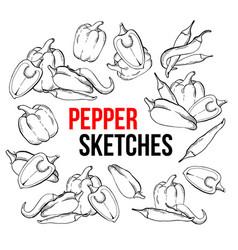 Peppers vegetarian food vegetable handdrawn vector